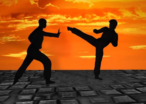 martial-arts-2544677_1920